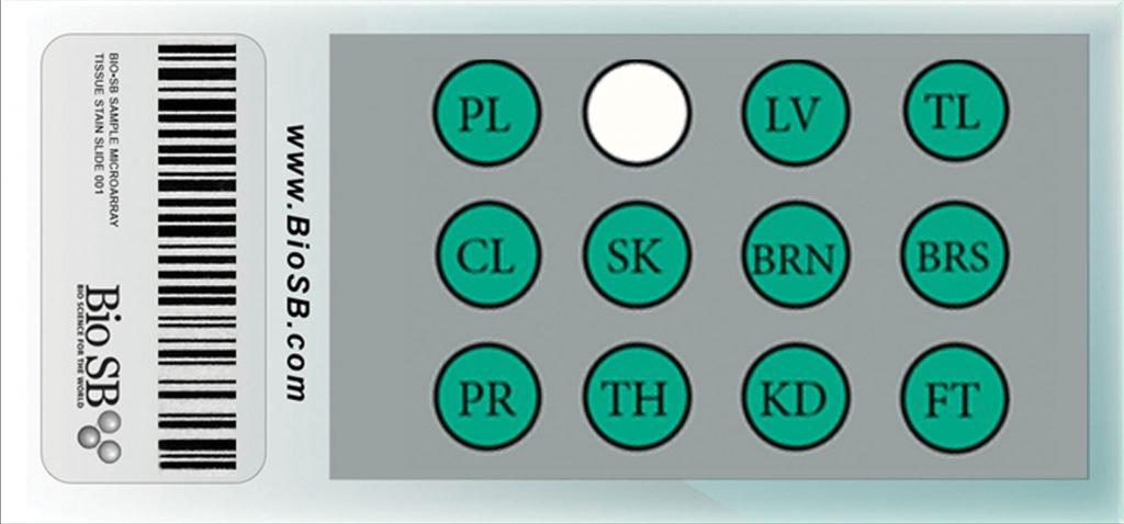 Normal Human Tissue Microarrays - Bio SB