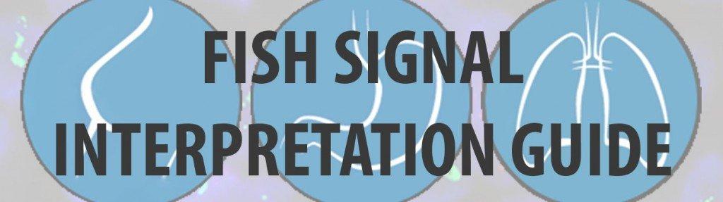 buttons_FISH_SIGNAL_INTERPRETATION_2