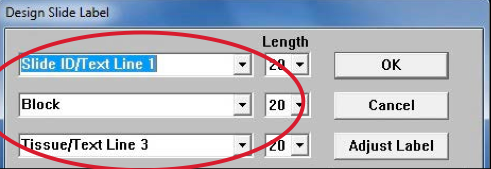 TintoStainer Slide Label Printing
