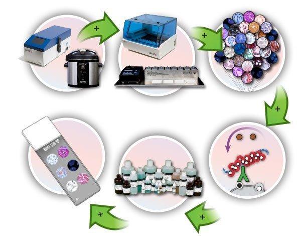 immunohistochemistry ihc immuno histo advanced staining products detection systems equipment ancillaries microarrays