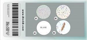 3 Core ROS1 Cell Line Microarray CLMA